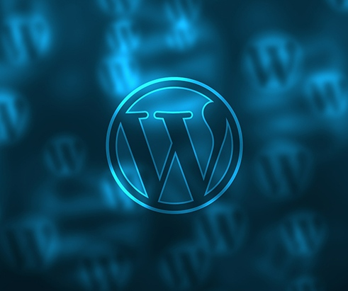 customização wordpress